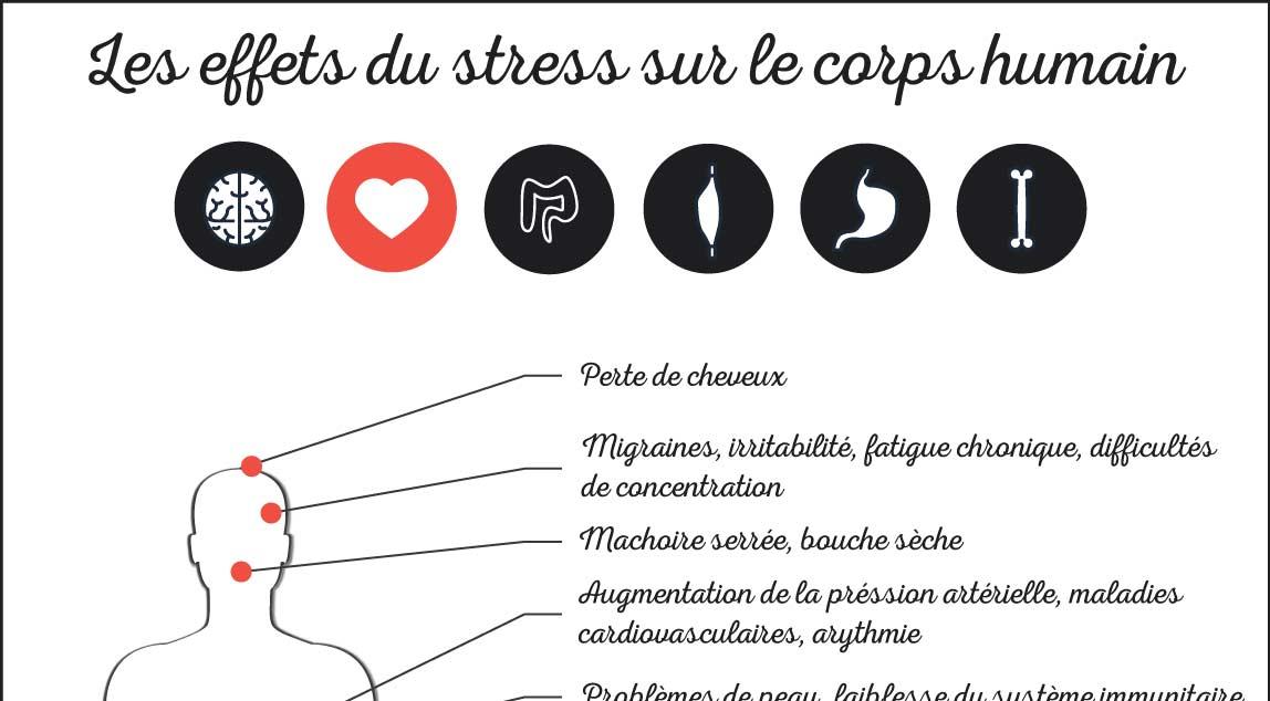 les effets du stress sur le corps humain infographie. Black Bedroom Furniture Sets. Home Design Ideas