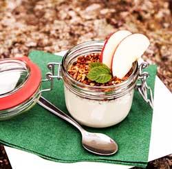 yaourt fermente probiotique